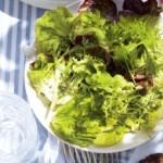 Salata de gradina