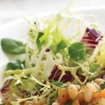 Salata verde de iarna