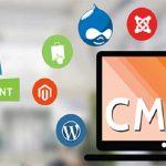 Siguranta –  un aspect important al CMS-urilor